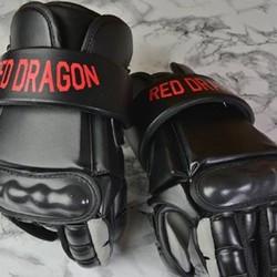 Kampfhandschuhe