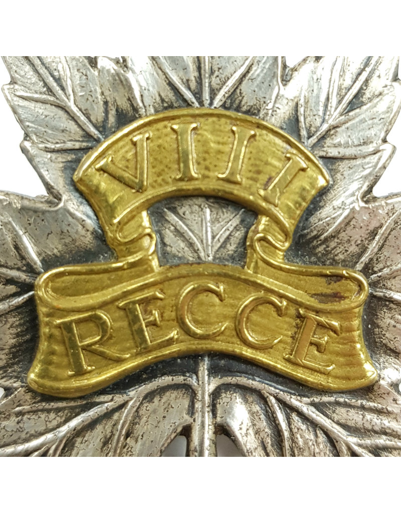 8th Recce Grouping - Medals, Capbadge, ribbons, dogtags