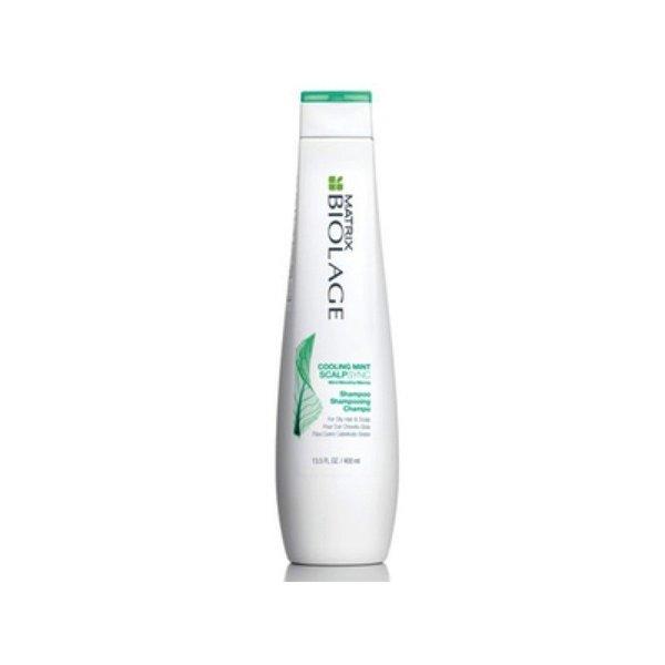 Biolage ScalpSync Anti Dandruff Shampoo 250ml