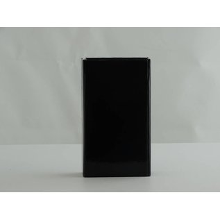 claerpack Magneetdoos 7 x 12 x 3 cm  zwart blinkend
