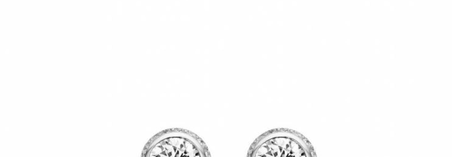 TI SENTO - Milano Earrings 7655ZI
