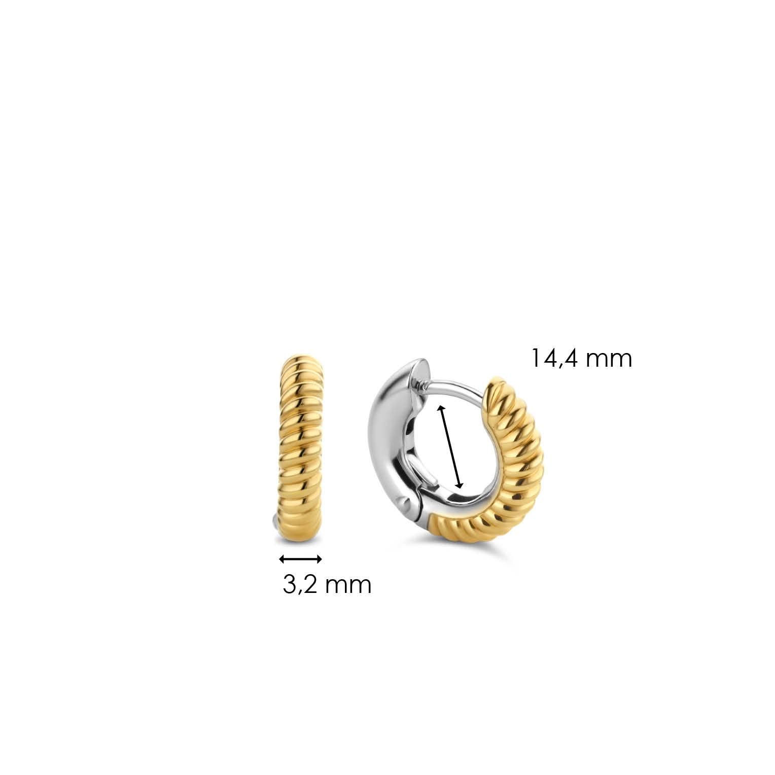 TI SENTO - Milano Earrings 7210YT-5