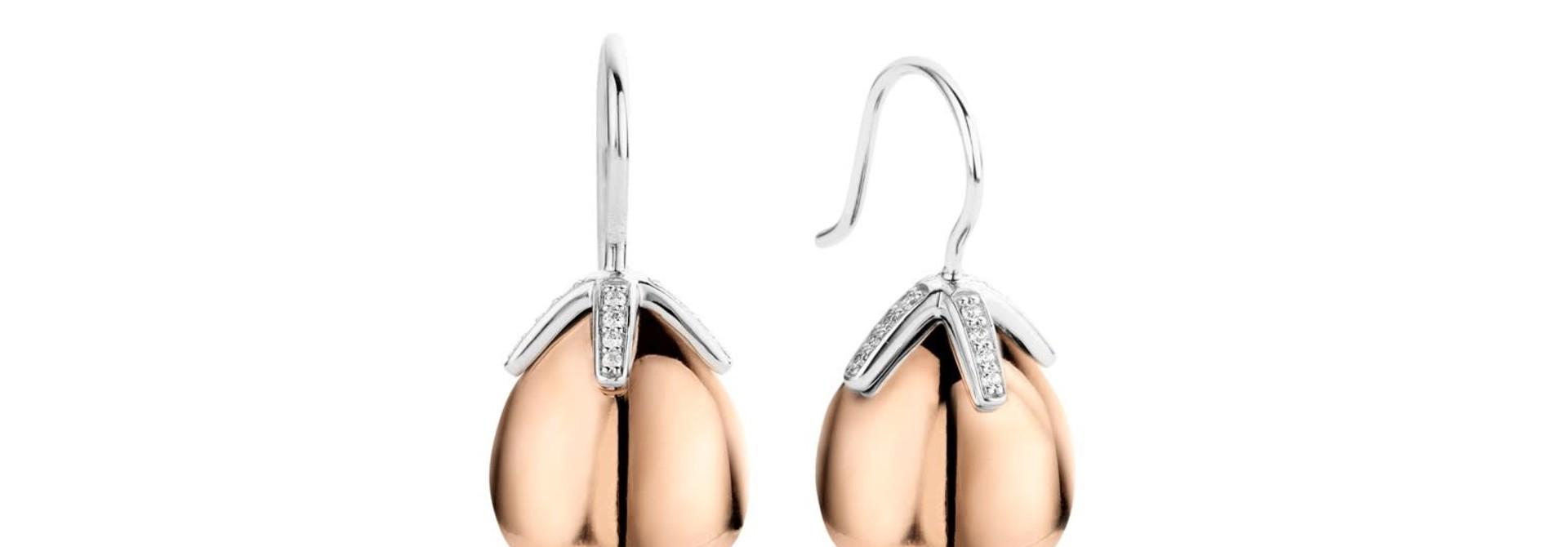 TI SENTO - Milano Earrings 7775SR