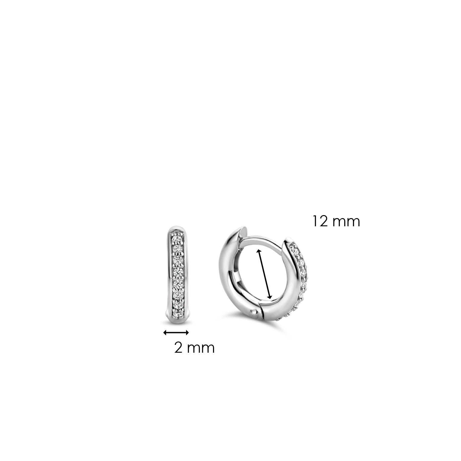 TI SENTO - Milano Earrings 7811ZI-5