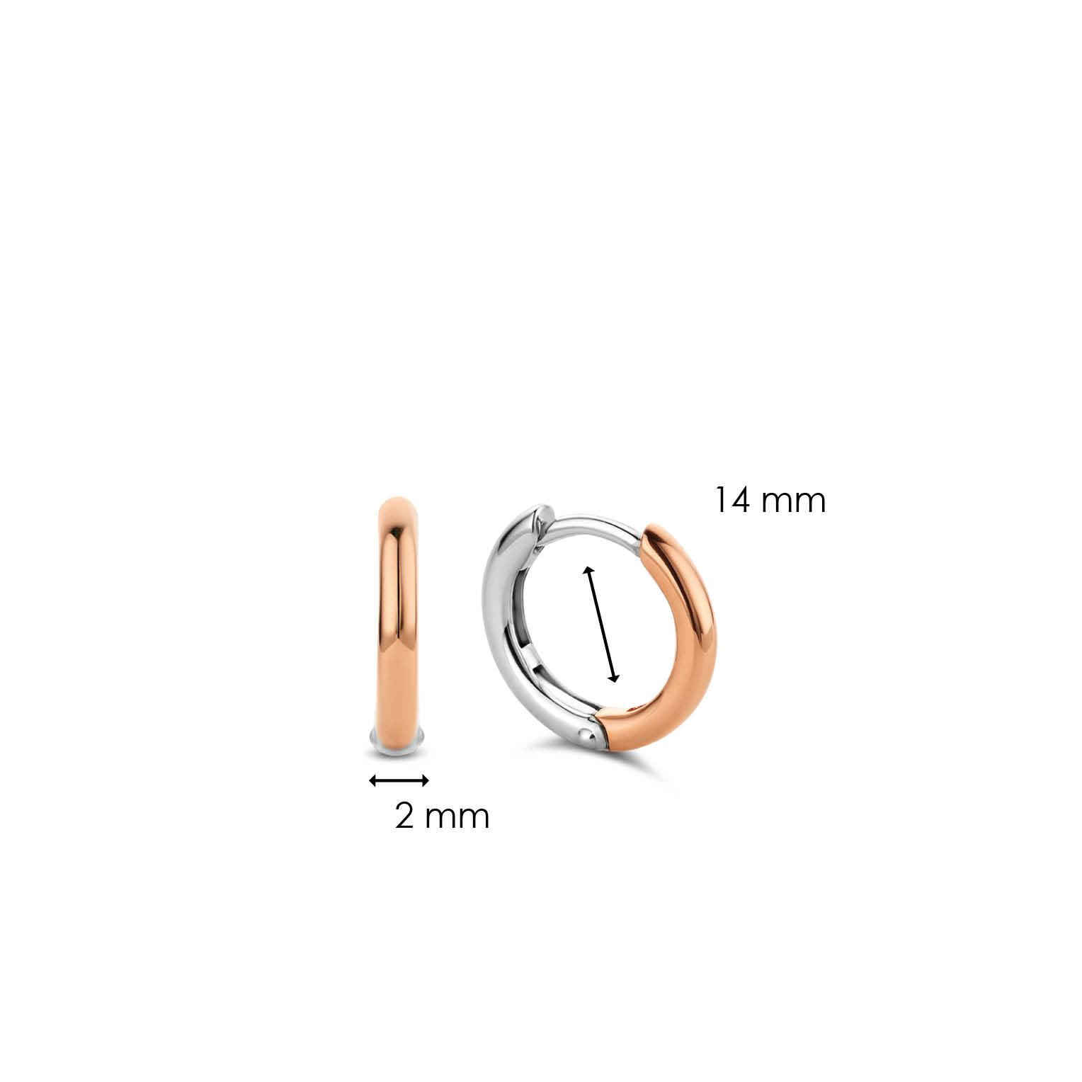 TI SENTO - Milano Earrings 7812SR-5