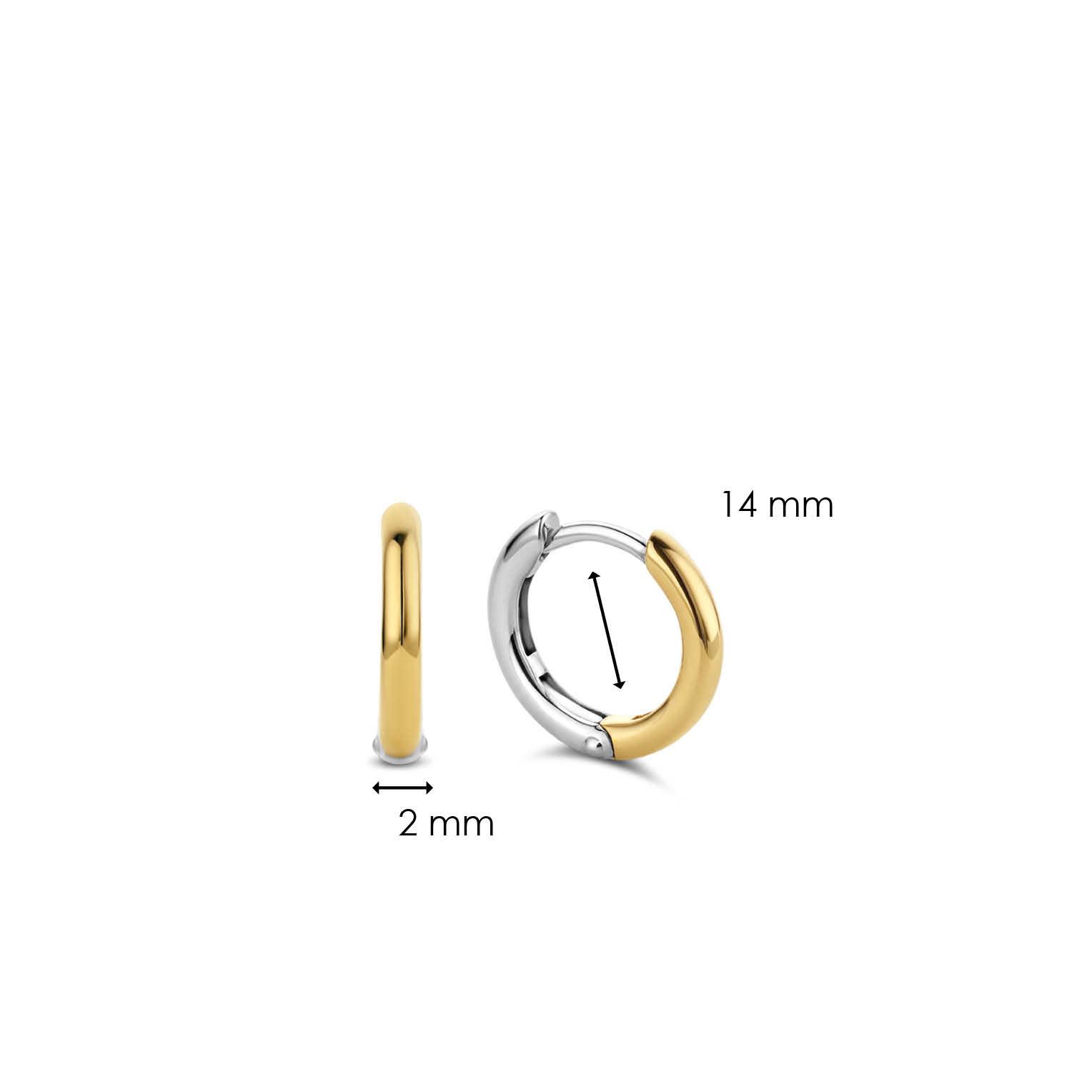 TI SENTO - Milano Earrings 7812SY-5