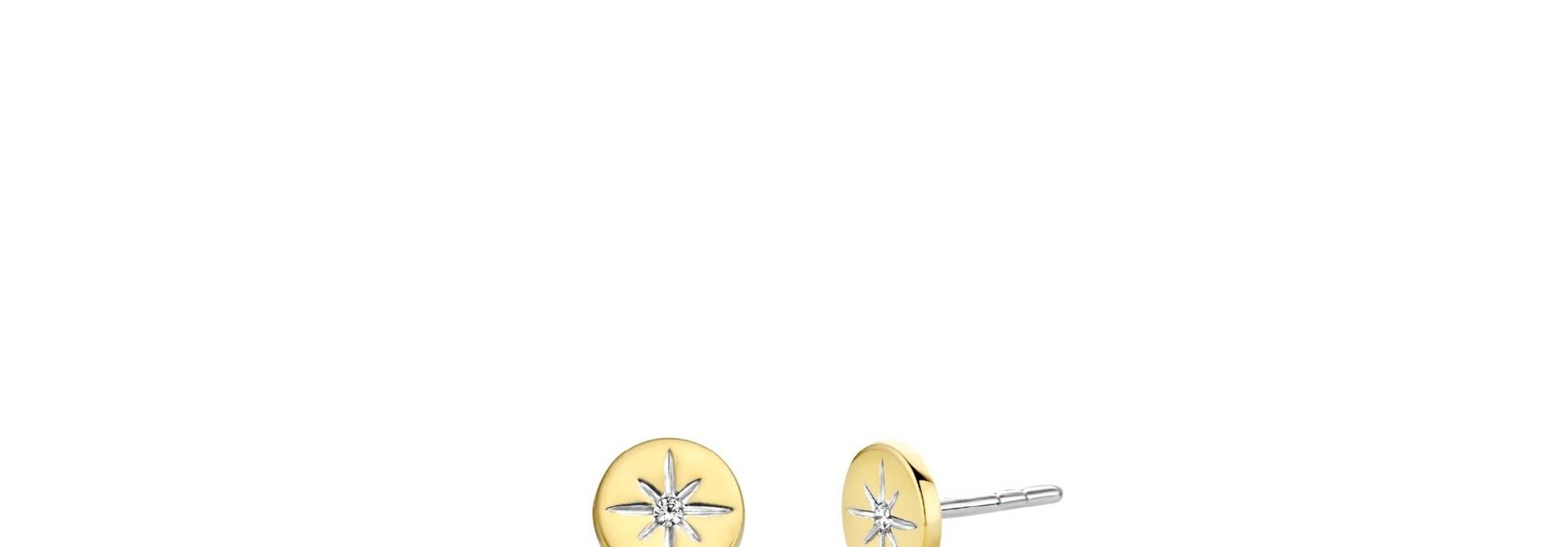 TI SENTO - Milano Earrings 7822ZY