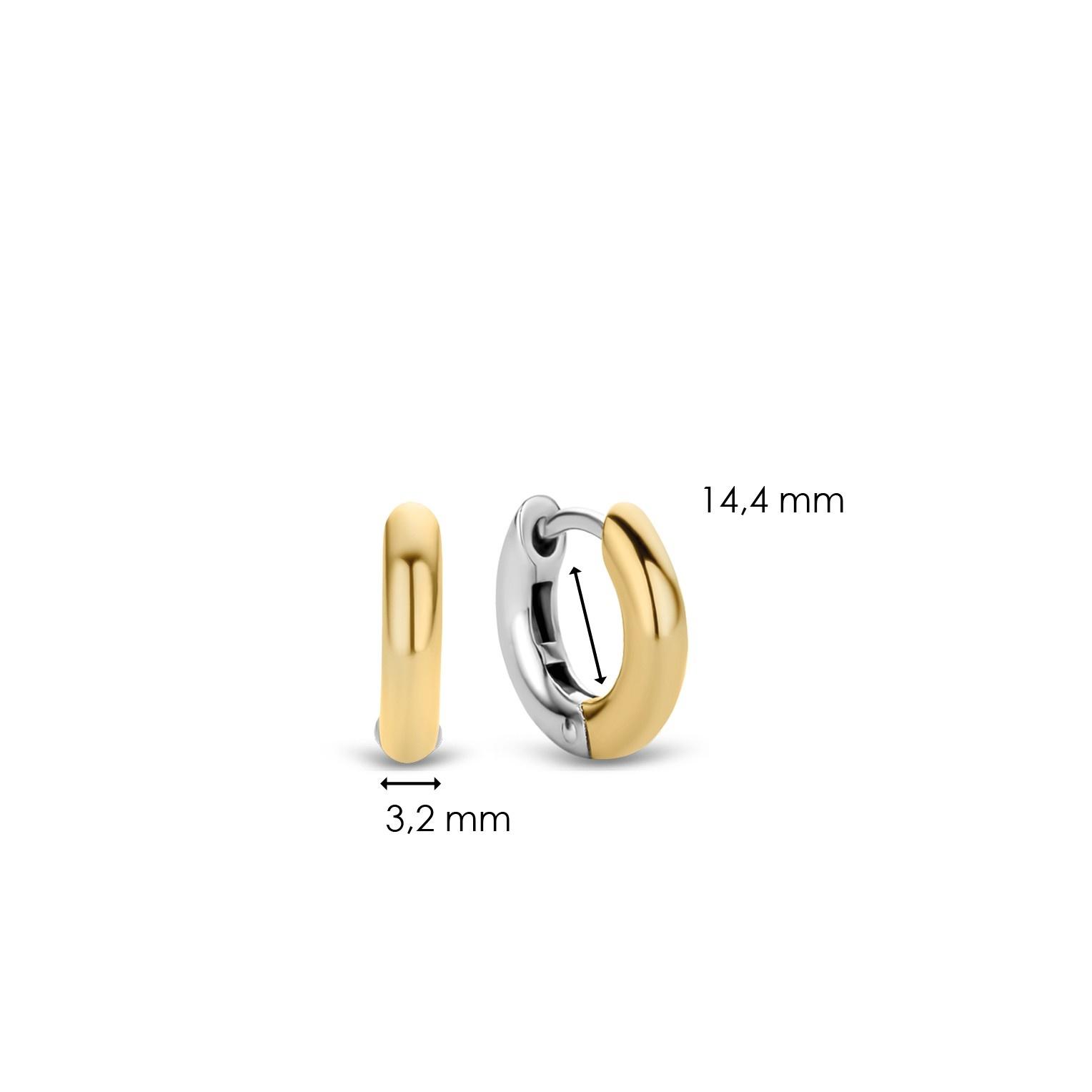 TI SENTO - Milano Earrings 7210SY-4