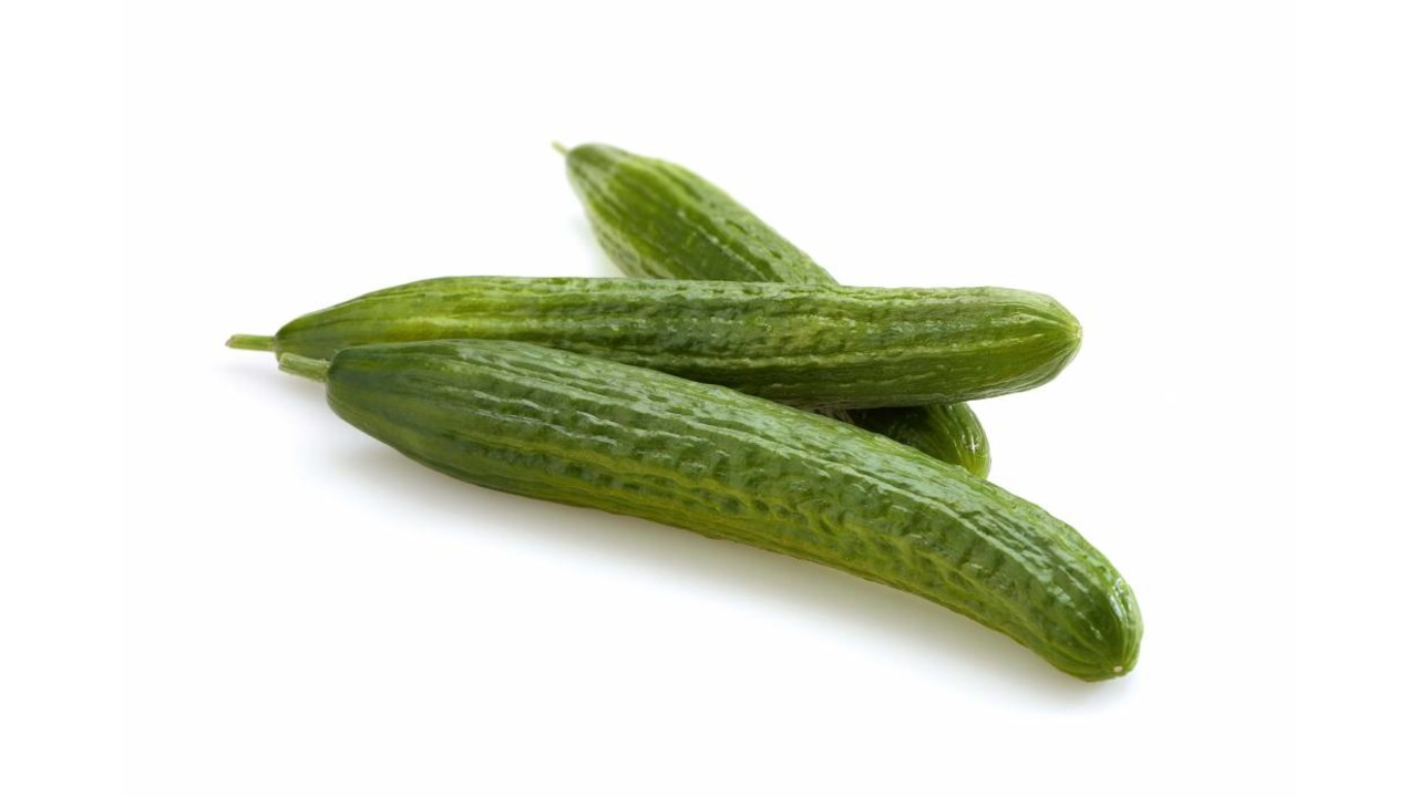 BIO komkommer