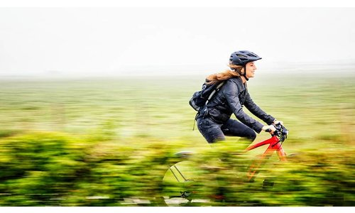 All Road and Trekking Bikes