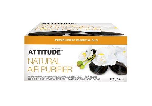 Attitude Luchtverfrisser passievrucht
