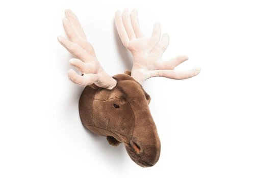 Wild & Soft Trophy moose Alfred