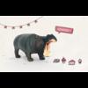 Leuke Kaartjes Nijlpaard hmmmmm