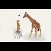 Leuke Kaartjes Stokstaartje giraf