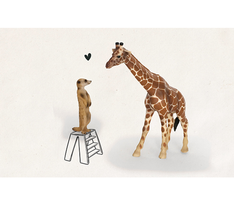Stokstaartje giraf