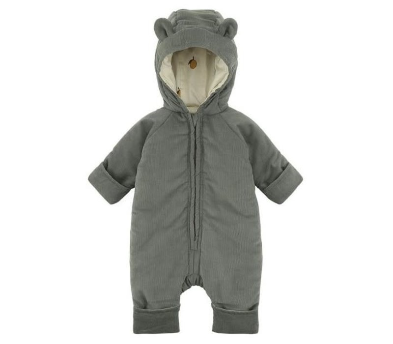 Teddy suit ivy green