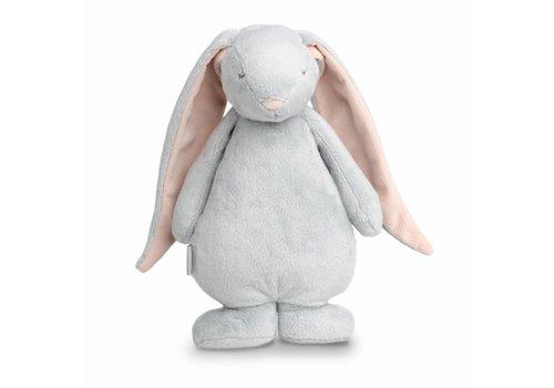 Moonie Moonie konijn met licht en geluid Cloud