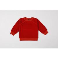 Sweater organic velvet chili