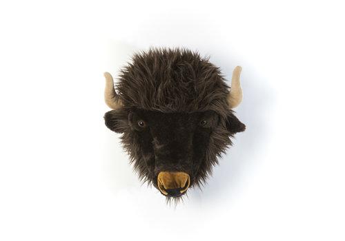 Wild & Soft Trophy buffel Alex