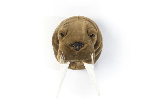 Wild & Soft Trophy walrus Jacob
