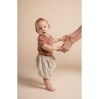 Baby Bloomers - Circa Stripe