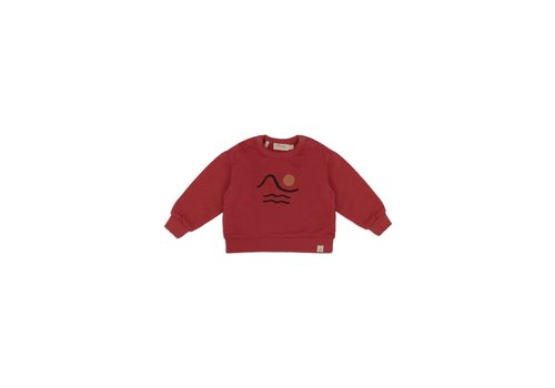 Dusq Sweater LS american fleece clay red
