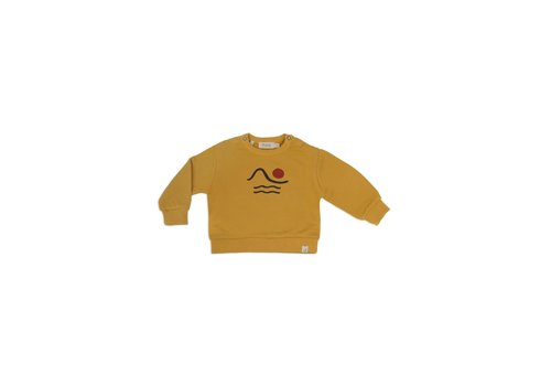 Dusq Sweater LS american fleece mellow yellow