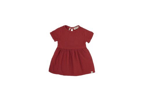 Dusq Dress cotton muslin clay red