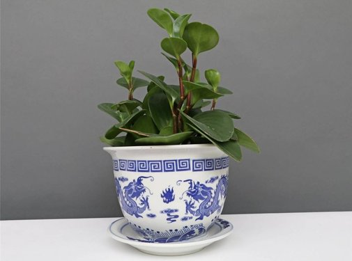 Yajutang Flowerpot Blue-White & Dragon Motif Ø20