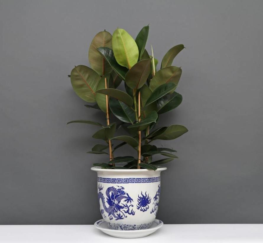 China Porzellan Blumentopf Blau-Weiß mit Drachenmotiv Ø 33cm