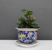 Yajutang Blumentopf mit Untersetzer, Porzellan Blaumalerei Blumenmotiv Ø 22cm