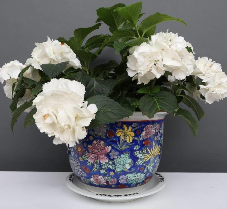 China Porzellan Blumentopf  Blau mit bunten Blumen Ø 24cm