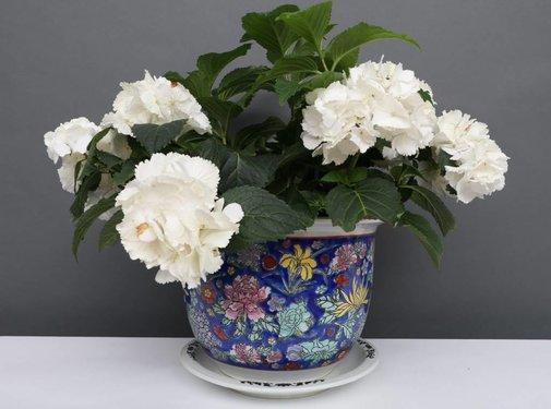 Yajutang Flowerpot blue & colorful flowers Ø 29