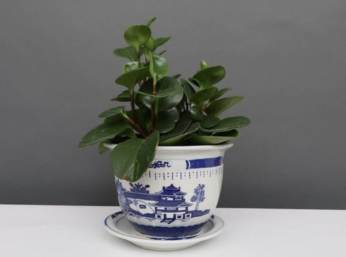 Yajutang Flowerpot Blue-White with Landscape Ø24