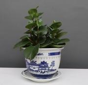 Yajutang Blumentopf Blau-Weiß mit Landschaft Ø29