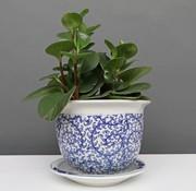 Yajutang Blumentopf mit Untersetzer , Porzellan, Blaumalerei  Ø 17cm
