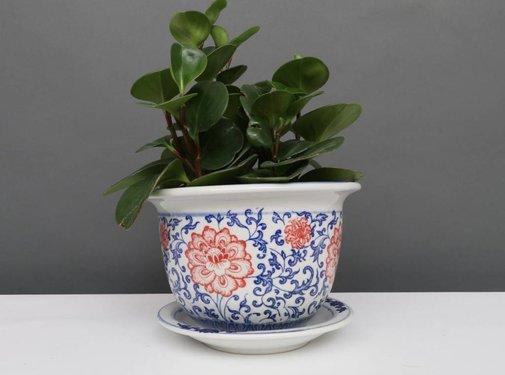 Yajutang Blumentopf Blau-Weiß & roten Blumen Ø20