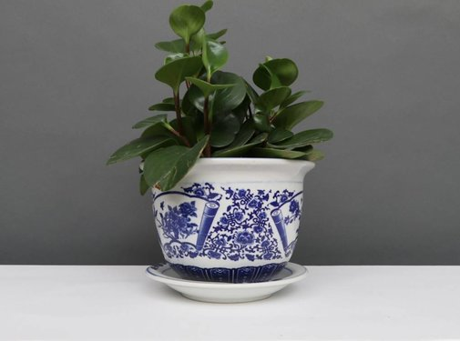 Yajutang Blumentopf Blau-Weiß mit Pfingstrose Ø17