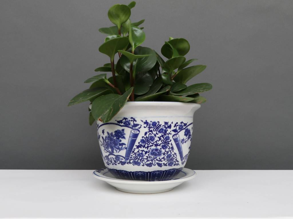Flower Pot Plant Blue White Porcelain Ø 17cm