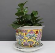 Yajutang Blumentopf  mit Untersetze,  Porzellan Gelbmalerei Blumenmotiv Ø 22 cm