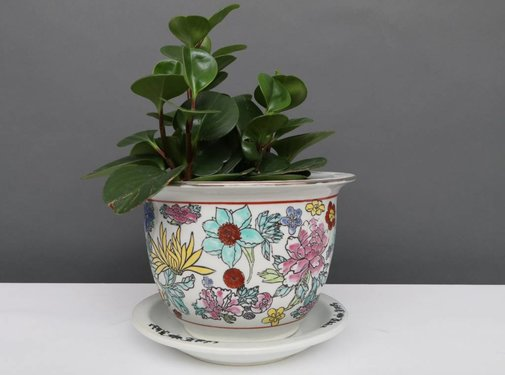 Yajutang Flowerpot white & colorful flowers Ø 17