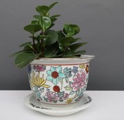 Yajutang Flowerpot white with colorful flowers Ø24