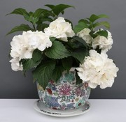 Yajutang Flowerpot white & colorful flowers Ø 28