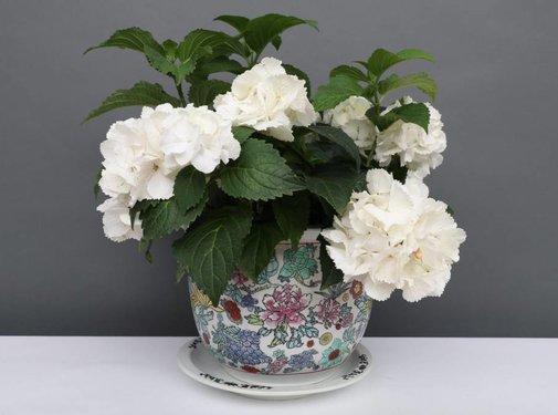 Yajutang Blumentopf Weiß mit bunten Blumen Ø 28cm