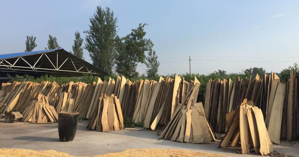 Ulmenholz im Möbelbau