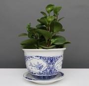 Yajutang Blumentopf Blau-Weiß mit Vier Blumen Ø17