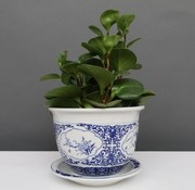 Yajutang Flowerpot Blue-White & Four Flowers Ø17