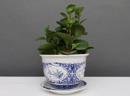 Yajutang Flowerpot Blue-White & Four Flowers Ø20
