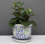 Yajutang Blumentopf Blau-Weiß & grünen Blumen Ø17