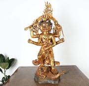 Yajutang vajrayaksta is one wisdom kings Buddhism